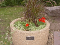 Planter at Zoo